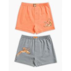 Трусы для мальчика Pelican BUB3139(2) оранжевый/серый